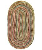 RugStudio presents Capel High Rock 43789 Gold Braided Area Rug
