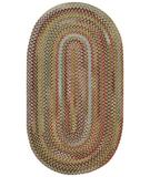 RugStudio presents Capel Kill Devil Hill 43810 Dusty Multi Braided Area Rug