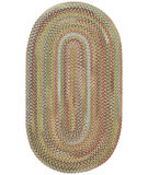 RugStudio presents Capel Kill Devil Hill 67072 Dusty Multi Braided Area Rug