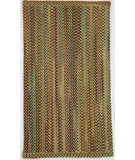 RugStudio presents Capel Sherwood Forest 67122 Amber Braided Area Rug