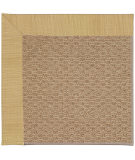 RugStudio presents Capel Zoe-Raffia 55787 Bramble/Taupe Machine Woven, Best Quality Area Rug