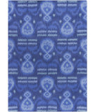 RugStudio presents Chandra Lina Lin32006 Blue Hand-Tufted, Good Quality Area Rug