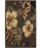 RugStudio presents Chandra Nassau NAS13702 Dark Brown Hand-Tufted, Good Quality Area Rug
