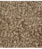 RugStudio presents Chandra Riza Riz19502 beige Woven Area Rug