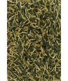 RugStudio presents Chandra Zara ZAR14511 Lime Green Woven Area Rug
