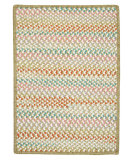 RugStudio presents Colonial Mills Color Frenzy Fr69 Sour Apple Braided Area Rug