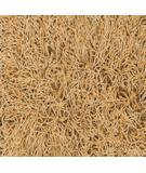 RugStudio presents Dalyn Super Shag Mix Apricot Area Rug