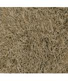 RugStudio presents Dalyn Super Shag Mix Driftwood Area Rug