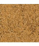 RugStudio presents Dalyn Super Shag Mix Pumpkin Area Rug
