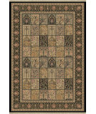 RugStudio presents Dynamic Rugs Ancient Garden 6503-091 Machine Woven, Better Quality Area Rug