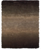 RugStudio presents Feizy Indochine 4551f Brown Area Rug
