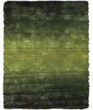 RugStudio presents Feizy Indochine 4551f Green Area Rug