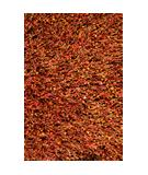 RugStudio presents Loloi Dion Shag DS-01 Rust Area Rug