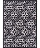 RugStudio presents Nourison Atash Ata01 Black Machine Woven, Good Quality Area Rug