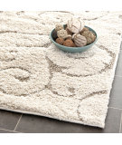 RugStudio presents Safavieh Shag SG455-1113 Cream / Beige Area Rug