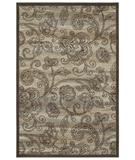 RugStudio presents Shaw Tranquility Tamara Light Multi 10110 Machine Woven, Better Quality Area Rug