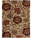 RugStudio presents Surya Alfredo AFR-3336 Moth Beige Machine Woven, Good Quality Area Rug