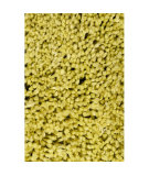 RugStudio presents Surya Mellow MLW-9004 Limeaid Area Rug