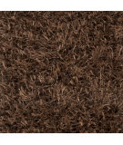 RugStudio presents Surya Taz TAZ-1025 Dark Chocolate Area Rug