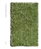 RugStudio presents The Rug Market America Resort Grazin' In The Grass 25150 Green Area Rug