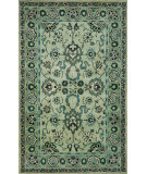 RugStudio presents Trans-Ocean Petra Agra Jade 9054/16 Hand-Tufted, Best Quality Area Rug