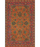 RugStudio presents Trans-Ocean Petra Agra Mandarin 9054/17 Hand-Tufted, Best Quality Area Rug